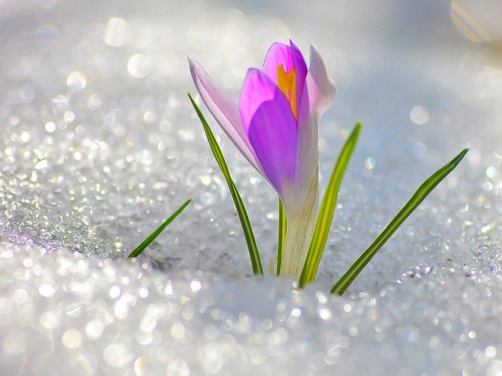 И это время называется весна